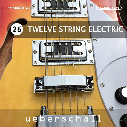 Twelve String Electric product image