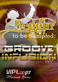 Beggin' to be Sampled: Groove Infusion product image