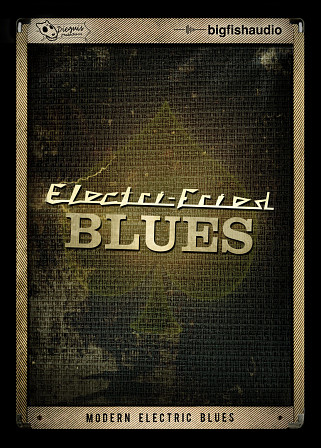 Electri-Fried Blues product image