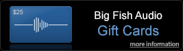 Big Fihs Audio Gift Cards