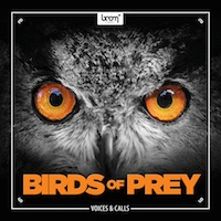Birds Of Prey - 160+ files of high quality birds of prey sound effects