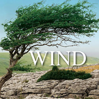 Wind Sound Effects - Over 200 various types of wind sound effects from both urban and rural settings