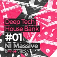Deep Tech House NI Massive product image