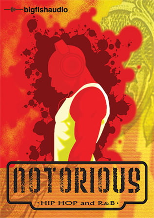 Notorious: Hip Hop and R&B product image