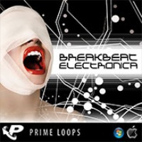 Breakbeat Electronica - A highly addictive digitized mashup to assault the senses