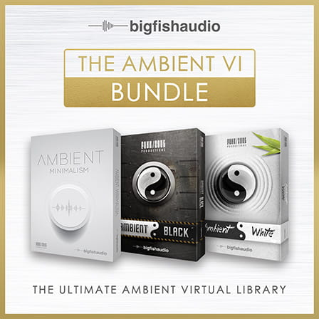 Ambient VI Bundle, The - An amazing bundle at a special limited time price!