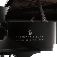 Academic Grand - A 1963 Steinway D concert grand