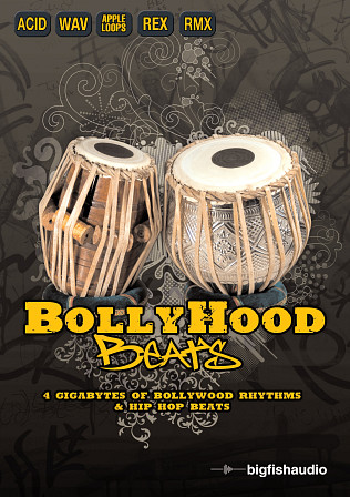 Bollyhood Beats - Perfect fusion of Hip Hop beats with traditional Indian percussion