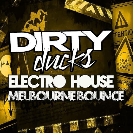 Electro House & Melbourne Bounce product image