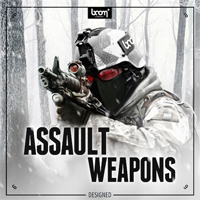 Assault Weapons - Designed product image