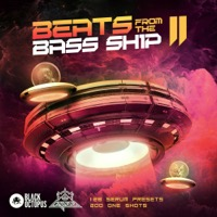 Beats From The Bass Ship 2 product image