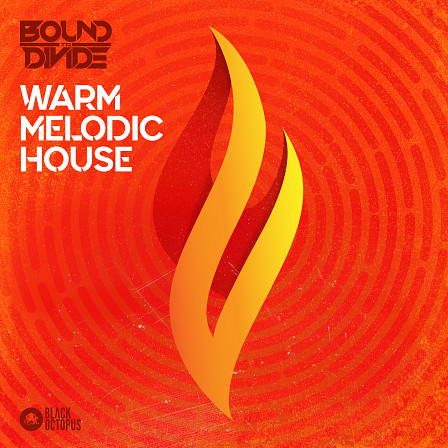 Warm Melodic House - Refresh yourself with this top quality & original approach to House productions