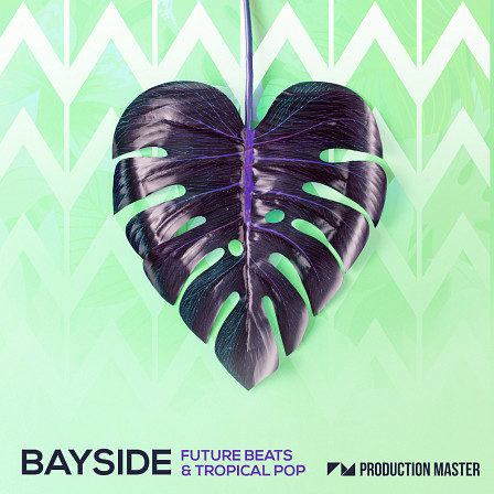 Bayside - Future Beats & Tropical Pop - Greeting you with the sound of Ibiza sunsets and late night beach parties