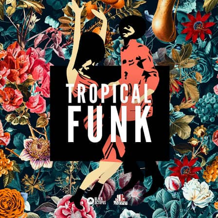 Tropical Funk by Basement Freaks - Inject these tropical flavors into your modern funk productions!
