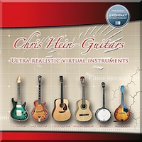 Chris Hein Guitars product image