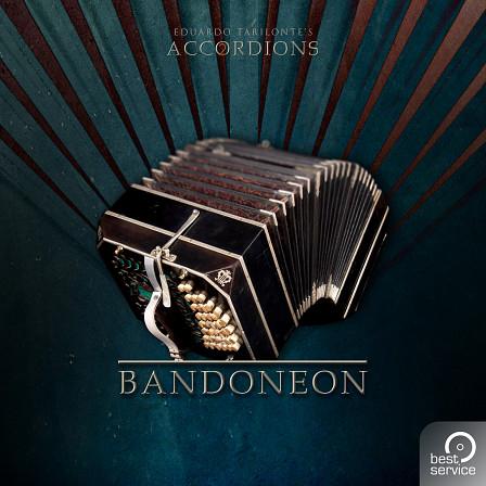 Accordions 2 - Single Bandoneon