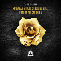 Roseway Studio Sessions Vol.1 - Future Electronica product image