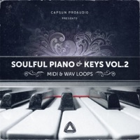 Soulful Piano & Keys - MIDI & Loops vol.2 product image