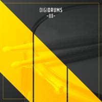 DigiDrums 3 Drums Only Instrument