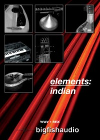 Elements: Indian - Authentic traditional Indian loops and performances