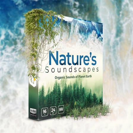 Nature's Soundscapes - Organic Sounds of Planet Earth - A dynamic sound library that includes premium quality background sounds