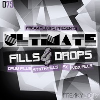 Ultimate Fills & Drops Vol.4 product image