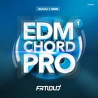 EDM Chord Pro Vol.1 product image
