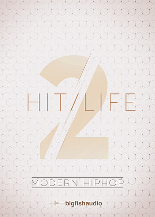 Hit Life 2: Modern Hip Hop - 50 Modern Urban Construction Kits