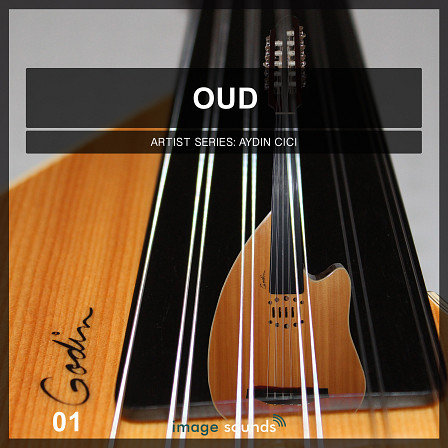 Oud 1 - Your Oriental Musical Tool Box
