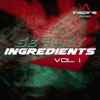 Secret Ingredients Vol.1 - The perfect Ingredients for a smash hit