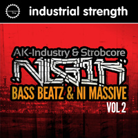 Nekrolog1k - Bass Beatz & NI Massive Vol.2 - Jammed with Bass, Leads, Textures and Drums