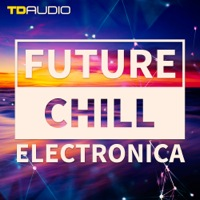 TD Audio - Future Chill & Electronica product image