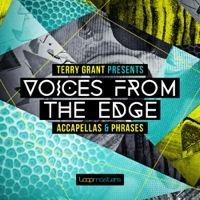 Terry Grant: Voices From The Edge product image