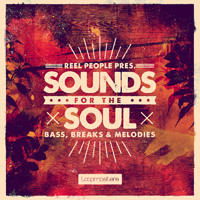 Reel People Presents Sounds for the Soul product image