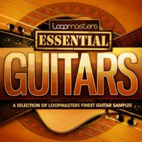 Loopmasters Presents Essentials 20 - Guitars - 352Mb of fresh loops from our top selling Guitar sample packs