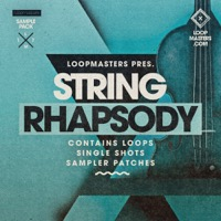 String Rhapsody - Harmonizing melodies and natural understated rhythms