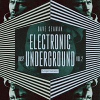 Dave Seaman - Electronic Underground Vol 2 - An intensifying collection of electronic sounds
