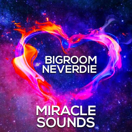 Bigroom Neverdie - 5 Professionally produced Construction Kits for Big Room & EDM producers