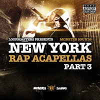 New York Rap Acapellas Part 3 product image