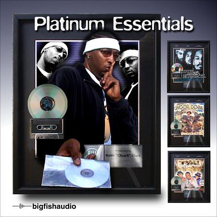 Platinum Essentials