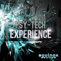 Psy-Tech Experience product image