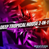 Deep Tropical House 2-in-1 - Featuring relaxing deep and chilled Construction Kits plus NI Massive presets