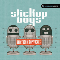 Stick Up Boys - Electronic Pop Vocals product image