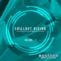 Chillout Rising Vol 1 product image