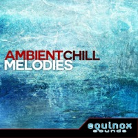 Ambient Chill Melodies  product image