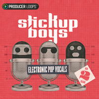 Stick Up Boys: Electronic Pop Vocals Vol 2 product image