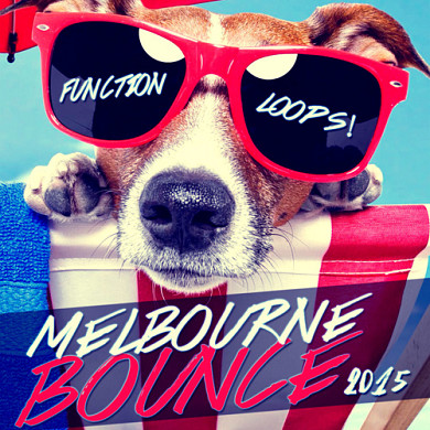 Summer Melbourne Bounce 2015 - Essential production tools needed to take your productions to the next level