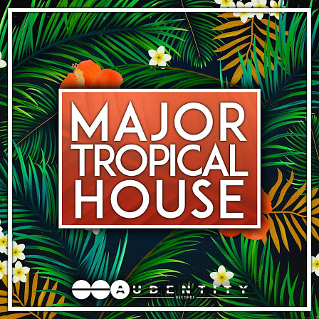 Major Tropical House - Five packed tropical house construction kits with tons of extras!