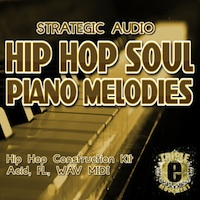 Hip Hop Soul Piano Melodies product image