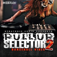 Pull Up Selector: Dancehall Vibes Vol.2 product image